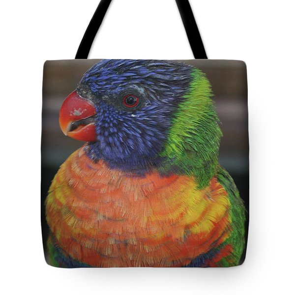 Colored Feathers Tote Bag