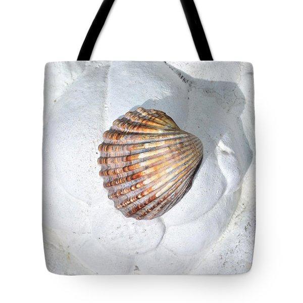 Colored Seashell  Tote Bag