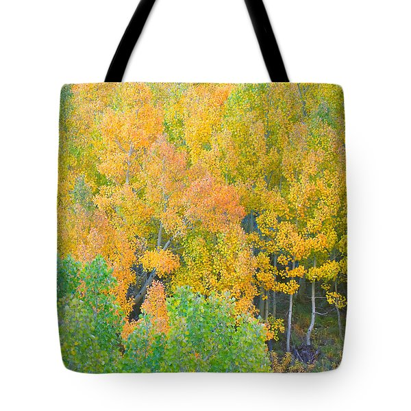 Tote Bag featuring the photograph Colorful Aspen Forest - Eastern Sierra by Ram Vasudev