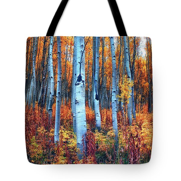 Colorful Aspens Tote Bag by Brian Kerls