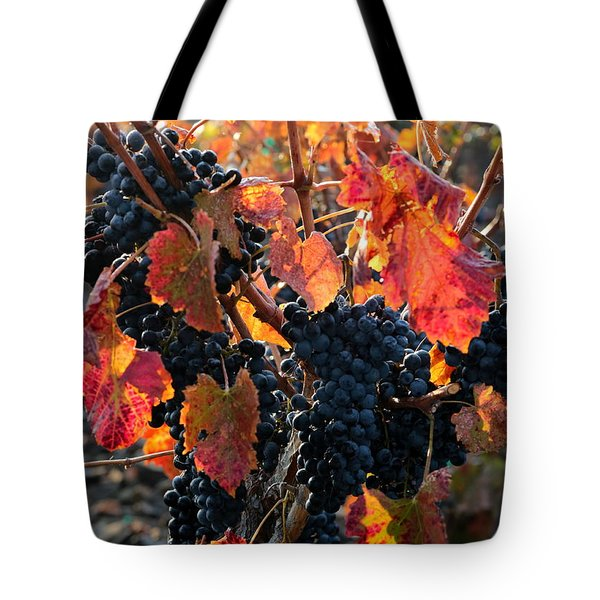 Colorful Autumn Grapes Tote Bag by Carol Groenen