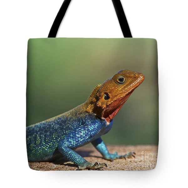 Colorful Awesomeness... Tote Bag