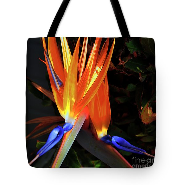 Tote Bag featuring the photograph Colorful California Morning by Clayton Bruster