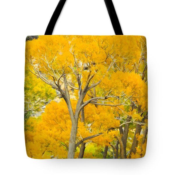 Colorful Canopy Tote Bag