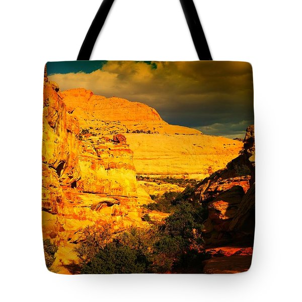 Colorful Capital Reef Tote Bag by Jeff Swan