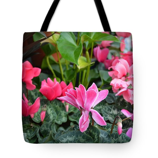 Colorful Cyclamen Tote Bag by Carla Parris