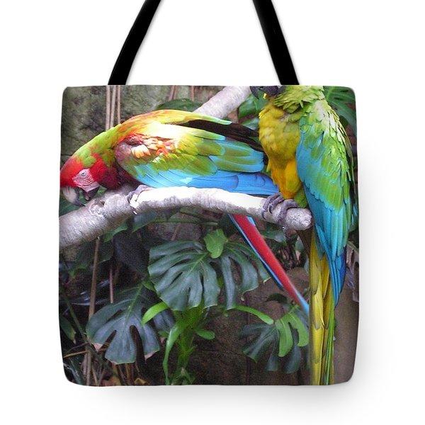 Colorful Duo Tote Bag