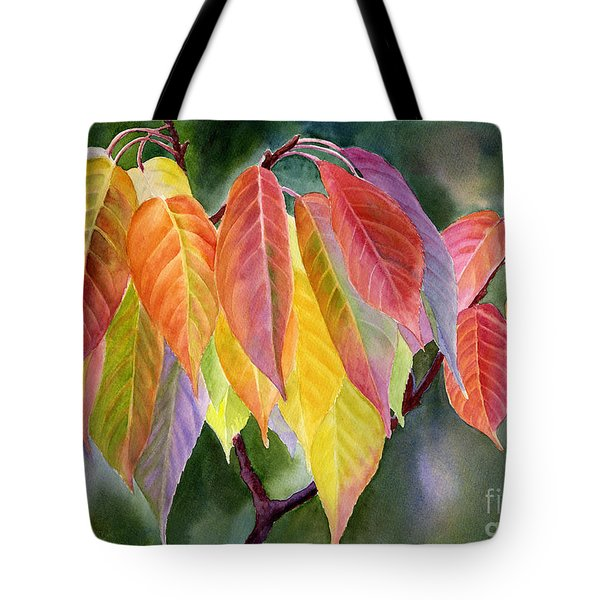 Colorful Fall Leaves With Background Tote Bag by Sharon Freeman