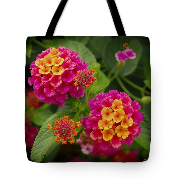 Colorful Lantana  Tote Bag
