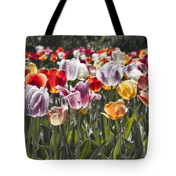 Colorful Tulips In The Sun Tote Bag