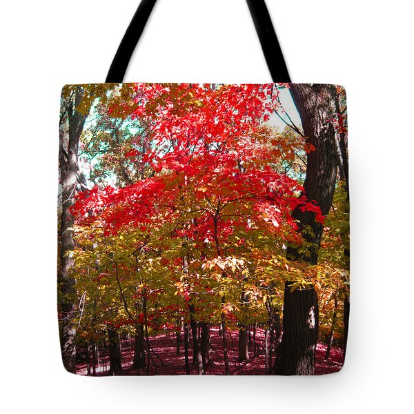 Colorful Woodland Tote Bag