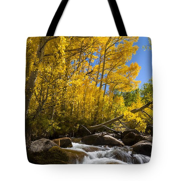 Colors And The Cascades Of South Fork Bishop Creek Tote Bag by Joe Doherty