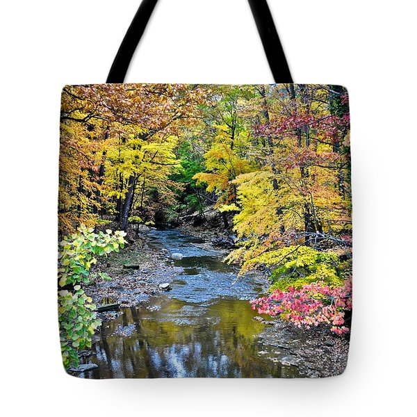 Colors Galore Tote Bag by Frozen in Time Fine Art Photography