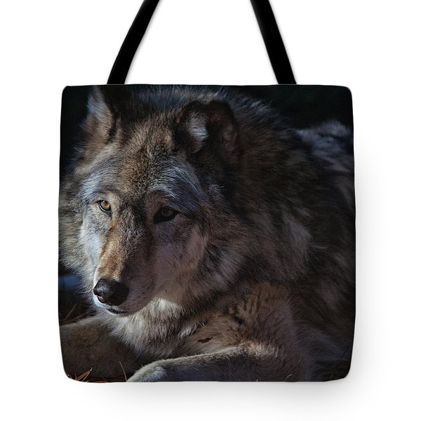 Colors Of A Wolf Tote Bag by Karol Livote