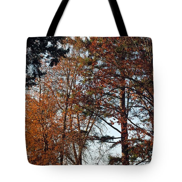 Tote Bag featuring the photograph Colors Of Autumn by Tikvah's Hope