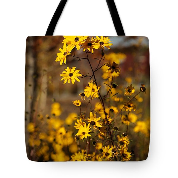 Colors Of Autumn Tote Bag by Sabrina L Ryan