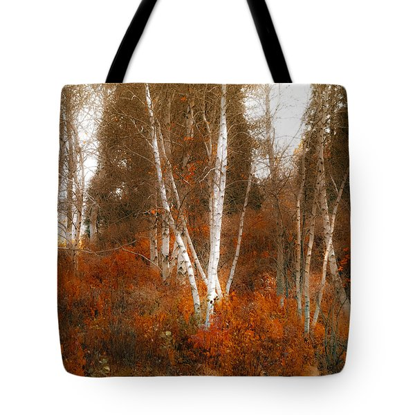 Colors Of Nature Tote Bag