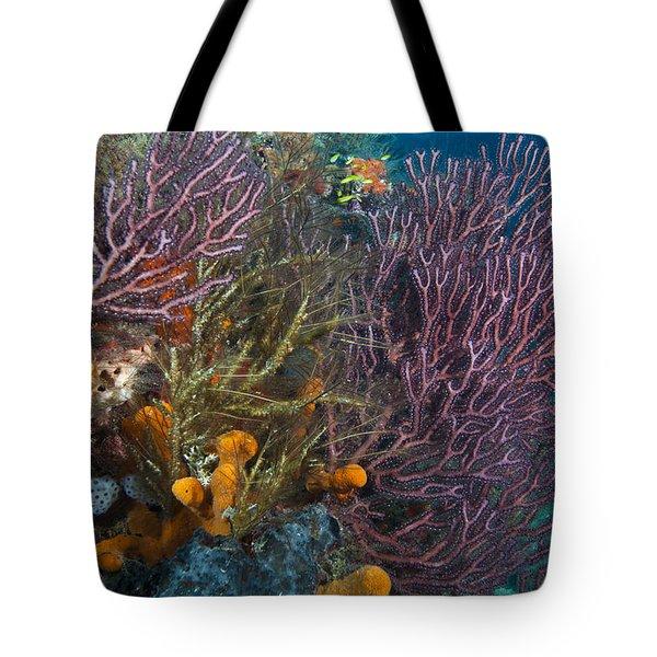 Colors Of Reefs Tote Bag