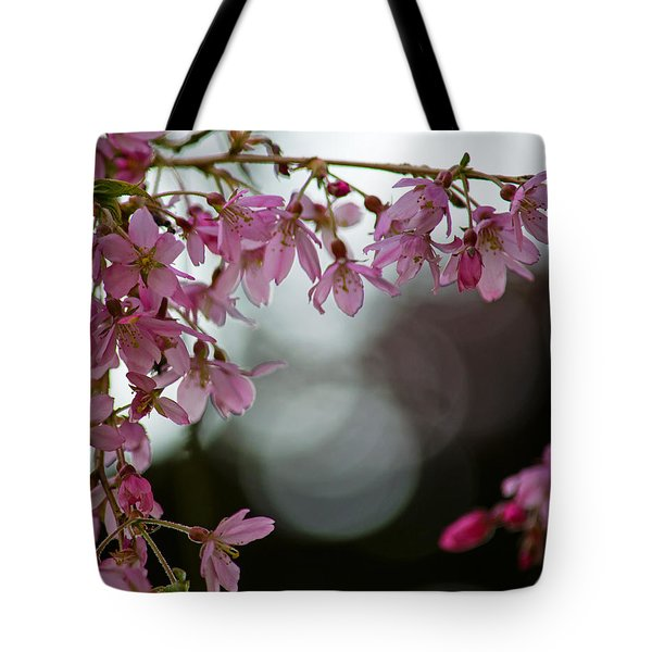 Tote Bag featuring the photograph Colors Of Spring - Cherry Blossoms by Jordan Blackstone
