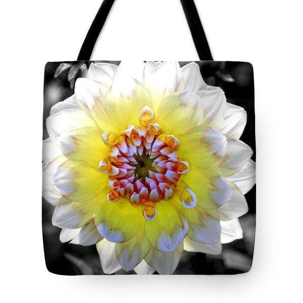 Colorwheel Tote Bag by Karen Wiles