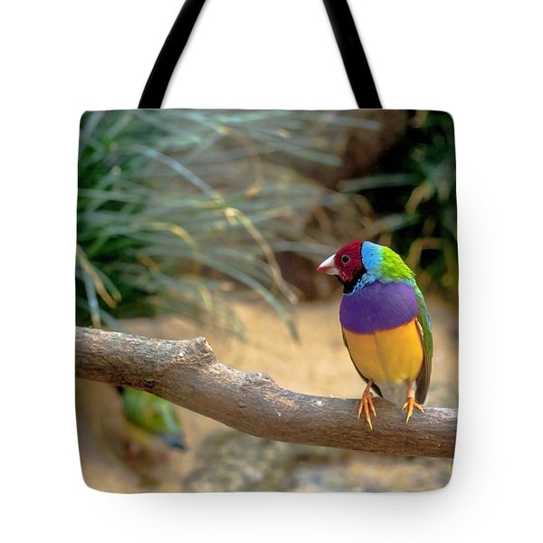 Colourful Bird Tote Bag by Daniel Precht