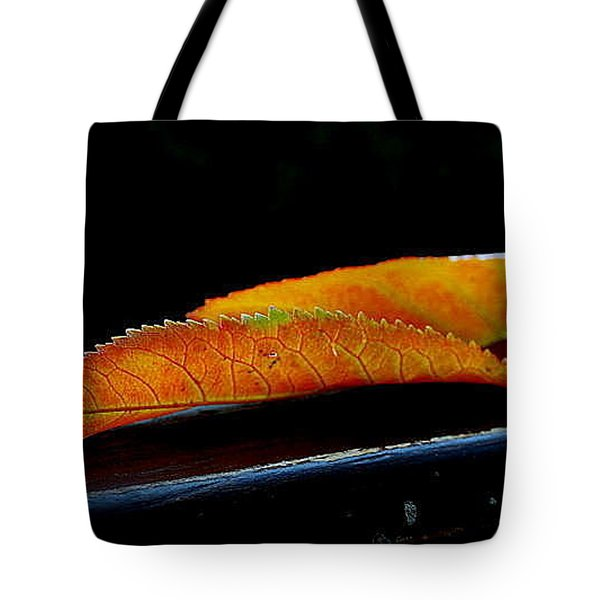 Tote Bag featuring the photograph Colourfull End by Marija Djedovic