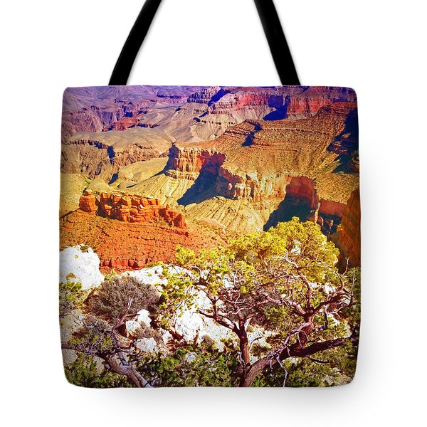 Colours Within The Canyon Tote Bag by Tara Turner