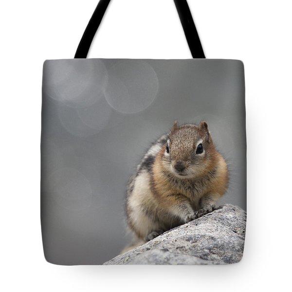 Columbian Ground Squirrel Tote Bag