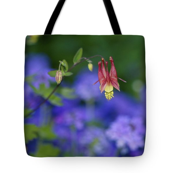 Tote Bag featuring the photograph Columbine And Verbena by Jane Eleanor Nicholas