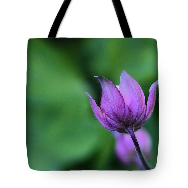 Columbine Flower Bud Tote Bag