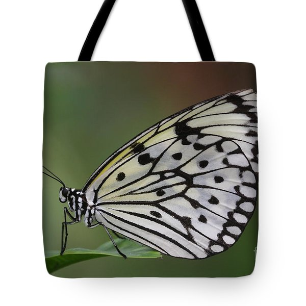 Come Sit With A Paper Kite Tote Bag by Ruth Jolly