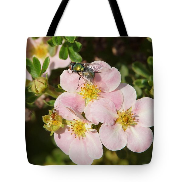Come To The Ugly Bug Ball Tote Bag by Ernie Echols