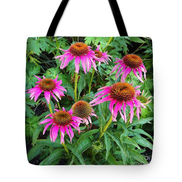 Tote Bag featuring the photograph Comely Coneflowers by Meghan at FireBonnet Art