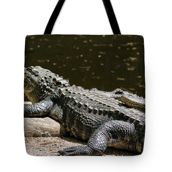 Comfy Cozy Tote Bag by Lois Bryan