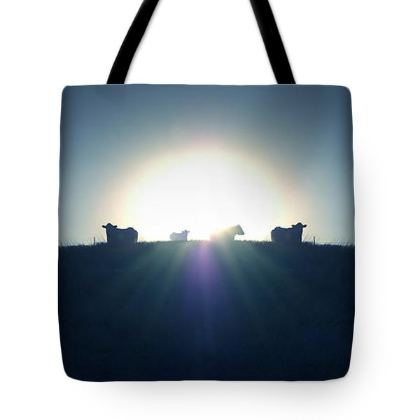 Coming Home Tote Bag by Mike McGlothlen