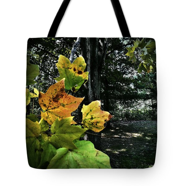 Tote Bag featuring the photograph Coming Of Fall by Al Harden
