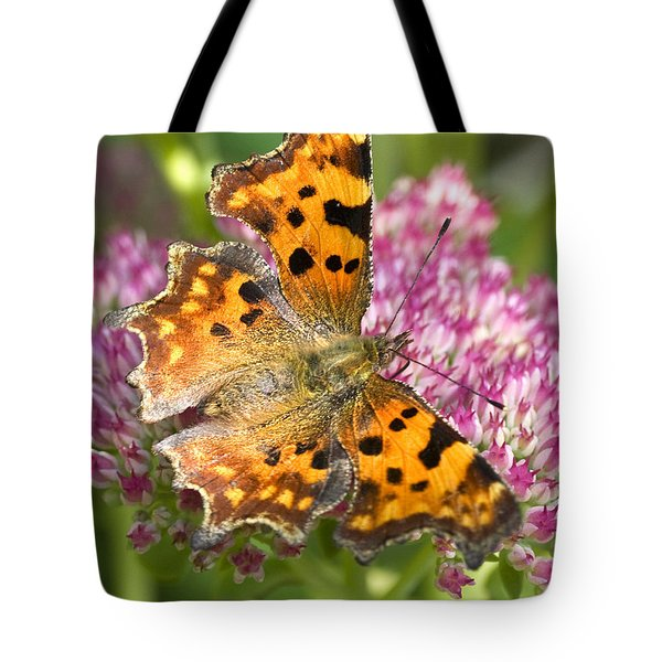 Comma Butterfly Tote Bag by Richard Thomas