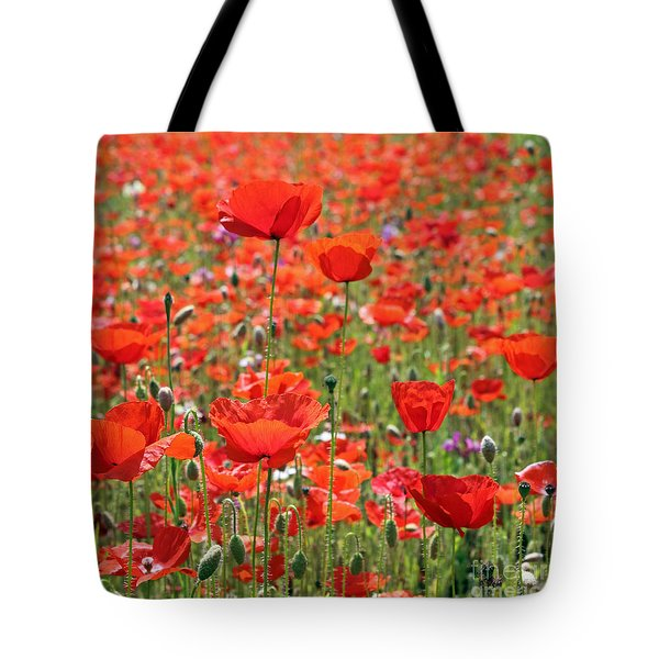 Commemorative Poppies Tote Bag