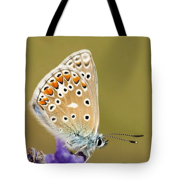 Common Blue Tote Bag by Anne Gilbert