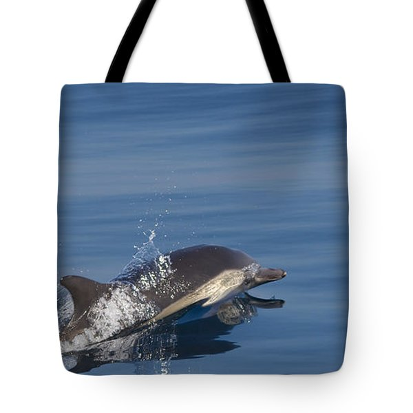 Tote Bag featuring the photograph Common Dolphin - Dauphin Commun by Nature and Wildlife Photography