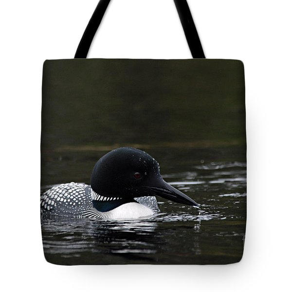 Common Loon 1 Tote Bag by Larry Ricker