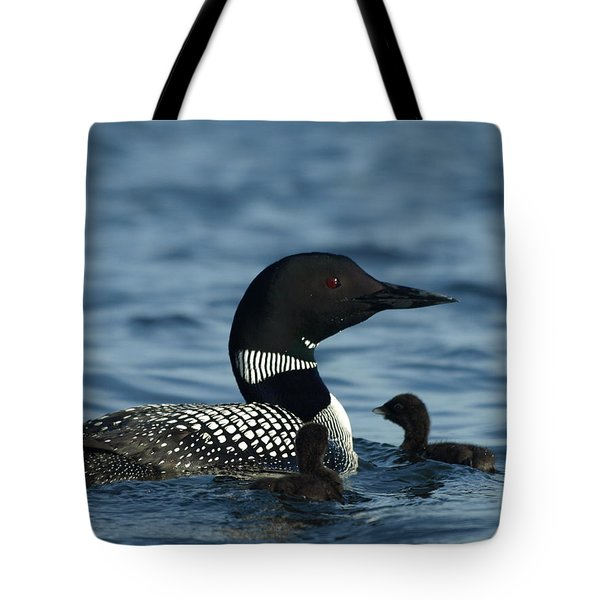 Tote Bag featuring the photograph Common Loon Family by James Peterson