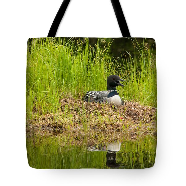 Common Loon Nesting Tote Bag