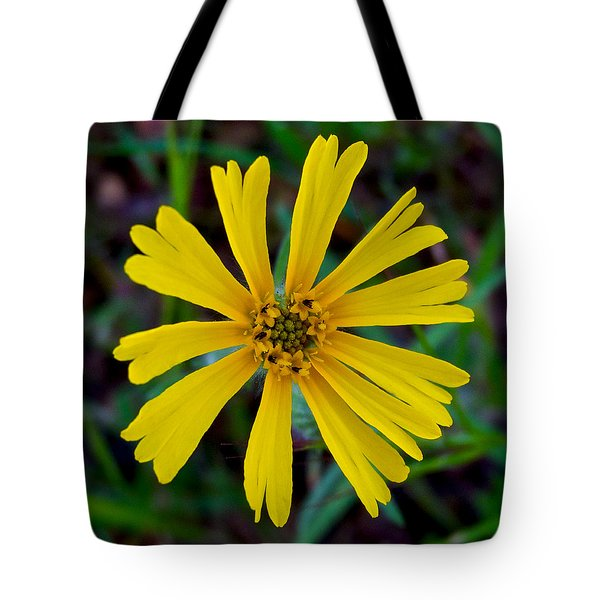 Common Madia In Park Sierra-ca Tote Bag by Ruth Hager
