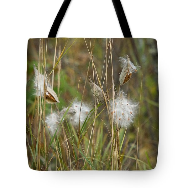 Common Milkweed Tote Bag by Linda Freshwaters Arndt