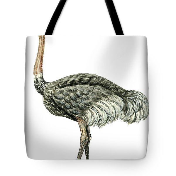 Common Ostrich Tote Bag by Anonymous