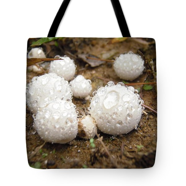 Common Puffball Dewdrop Harvest Tote Bag