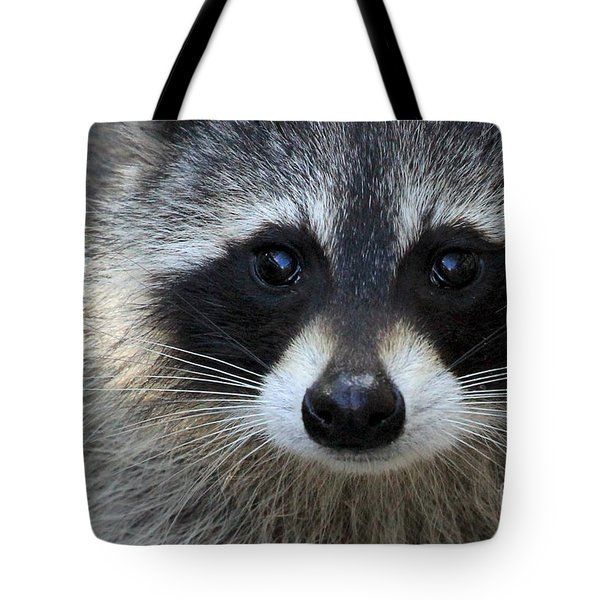 Common Raccoon Tote Bag