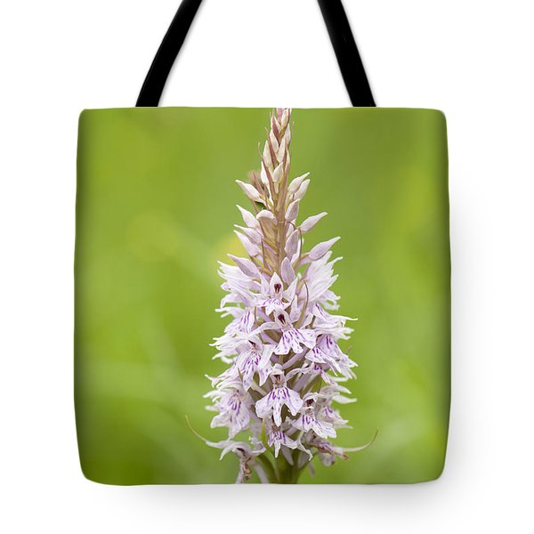 Common Spotted Tote Bag by Anne Gilbert