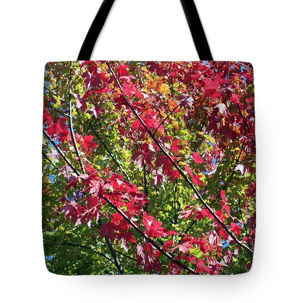 Tote Bag featuring the photograph Complimentary Colors by Debbie Hart